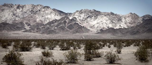 California Mojave Desert, 2012