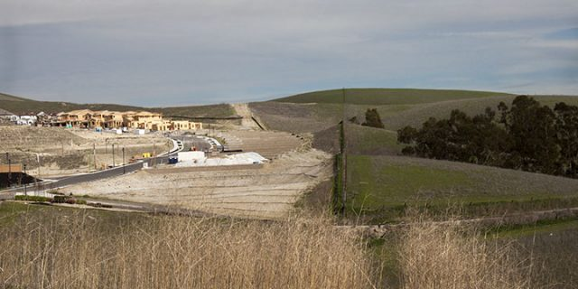 Ranch Land Meets New Development, Dublin, CA 3/2014